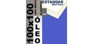 BASTIDOR ESTUDIO 46 X 17 LINO Nº3 (GRANO MEDIO) 100 X 100 (ÓLEO)