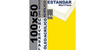 BASTIDOR ESTUDIO 46 X 17 LINO Nº3 (GRANO MEDIO) 100 X 50 (ÓLEO/ACRÍLICO)
