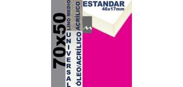 BASTIDOR ESTUDIO 46 X 17 LINO Nº3 (GRANO MEDIO) 70 X 50 (ÓLEO/ACRÍLICO)