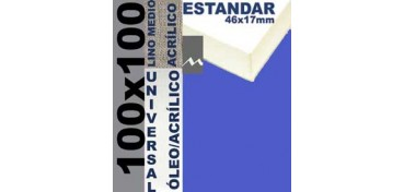 BASTIDOR ESTUDIO 46 X 17 LINO Nº3 (GRANO MEDIO) 100 X 100 (ÓLEO/ACRÍLICO)