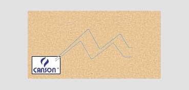 CANSON MI-TEINTES CARTULINA 160 G - LÍQUEN (Nº 407)
