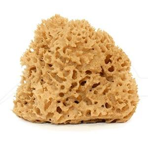 ESPONJAS NATURALES FORMA IRREGULAR